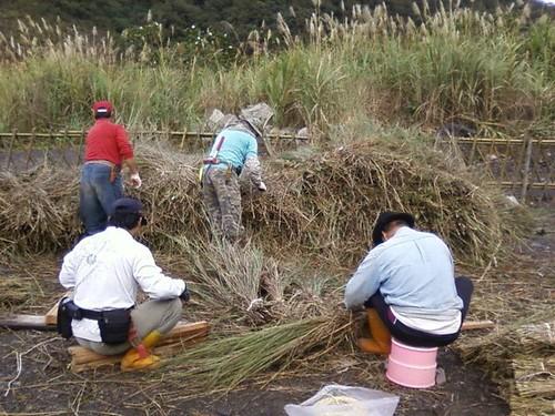 族人割除芒草整地。(圖片來源:麻必浩部落市集臉書粉絲團)