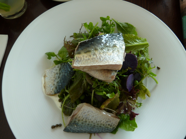 fish with congo potatoe salad & horseradish salad