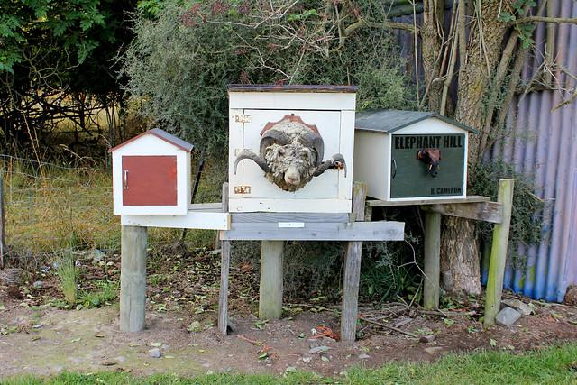 Crazy mailbox