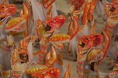 seafood, food,