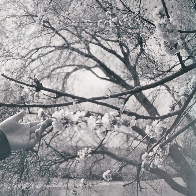 Photo33_33
