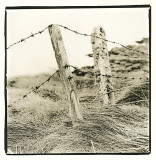 Old Fence, Clogherhead, Co Louth, Ireland (Lith Print)