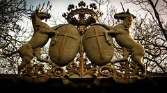 Licornes cristoliennes - Photo of Créteil