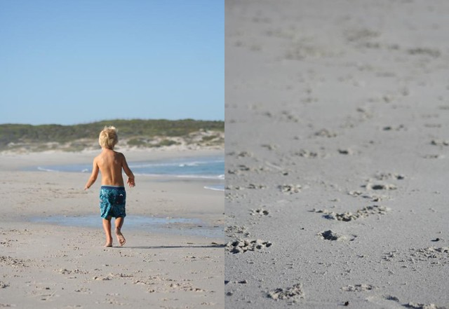 Scarborough Beach 9