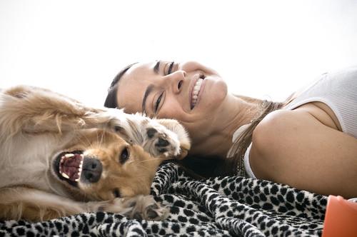 Amizade entre pets e humanos - Petlove - O Maior Petshop Online do Brasil