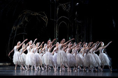 Artists of The Royal Ballet in Swan Lake, Act II