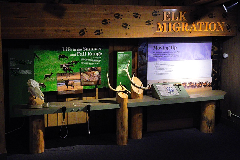 DSCN0647 National Elk Refuge