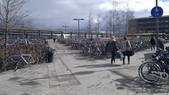 Uppsala bicycles