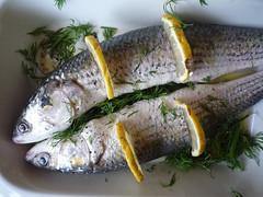 fish, fish, seafood, oily fish, food, dish, cuisine, milkfish,
