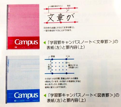 キャンパスノートの学習罫