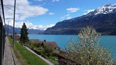 Widok z pociagu na jezioro Brienersee niedaleko Interlaken