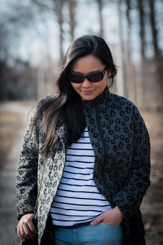 leopard and stripes 04
