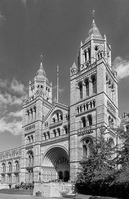 366 - Image 147 - Natural History Museum...