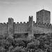 POTUGAL - Castelo Almourol