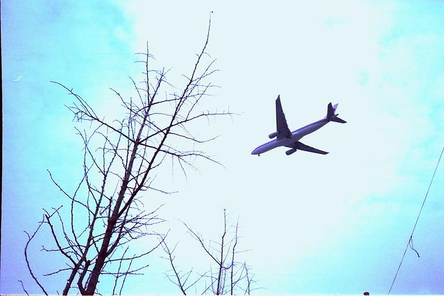 《我的菲林》極短篇#11-寂寞飛行-