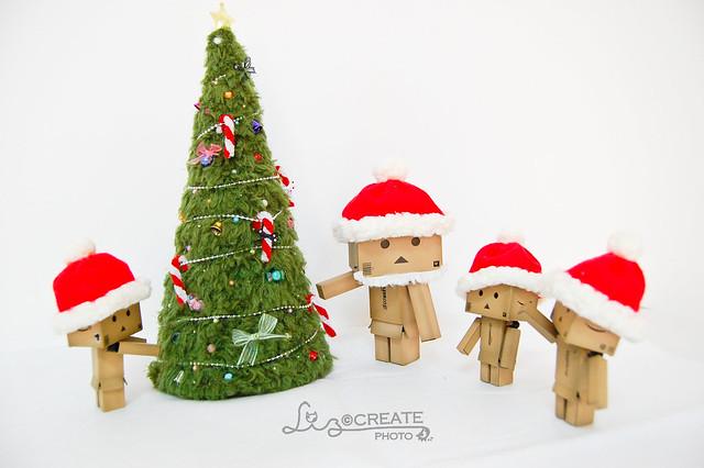 聖誕樹 VS 楞楞