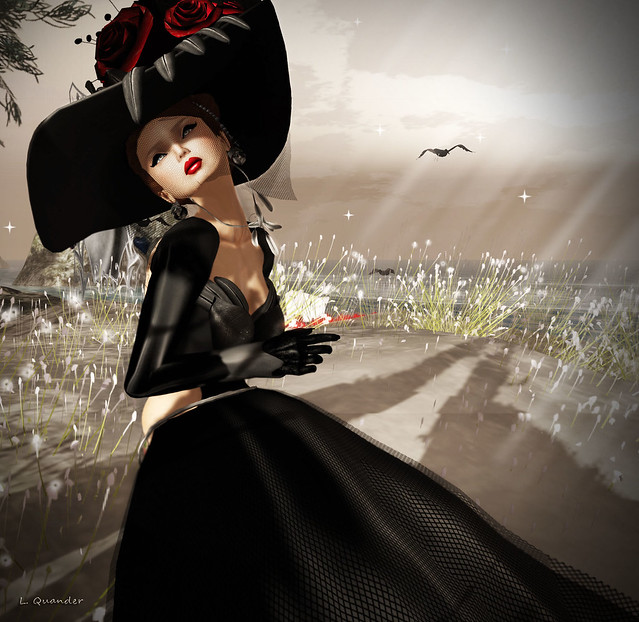 'Back To Black' ~plank couture~ Mmle Plume - Ophelia Swan Dress  with fishnet (close)