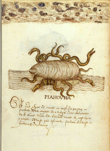 004--Histoire Naturelle des Indes- ca.1586-MA 3900- fol. 33v-34-© The Morgan Library & Museum