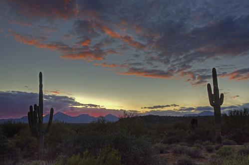 sunset arizona cactus mountains southwest nature clouds landscape evening colorful desert valley 2012 coth supershot naturesgarden mcdowellmountainregionalpark absolutelystunningscapes damniwishidtakenthat coth5 dailynaturetnc12
