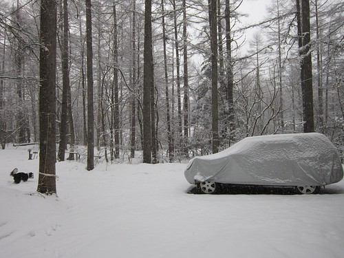 弱い雪の降るアプローチ 2012年3月9日16:07 by Poran111