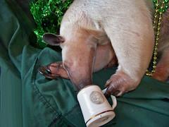 Pua holding her mug