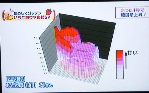 草莓06.JPG