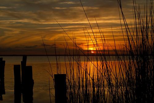 sunset sun water grass silhouette clouds pier florida indianriver merrittislandnationalwildliferefuge