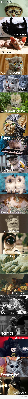 fonts as cat