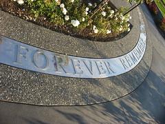 6310 Forever Remember