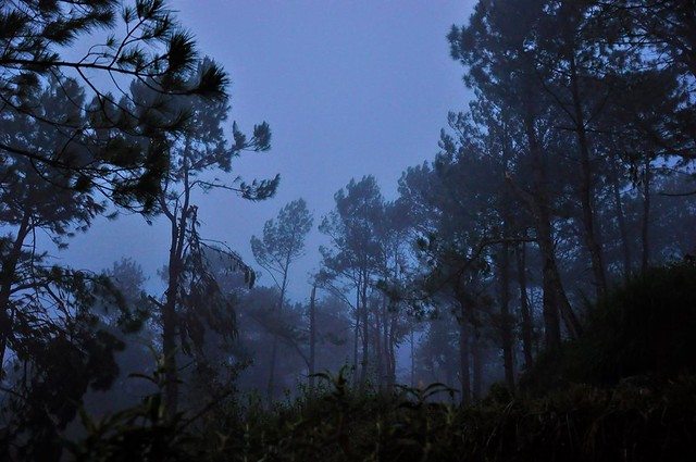 Sagada Twilight