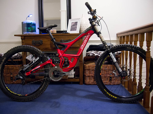 Kaises specialized demo 8