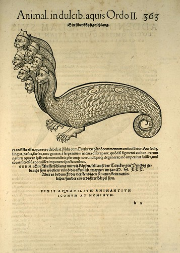 015-Monstruo-Icones animalium- (1553)- Conrad  Gesner- SICD Strasbourg by ayacata7