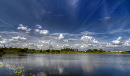 blue sky usa lake reflection nature clouds landscape day florida central calm fl noon lakealfred pwpartlycloudy