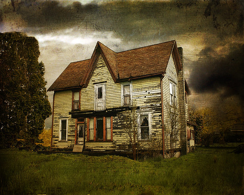 Old Myers House  by Lynne Larkin