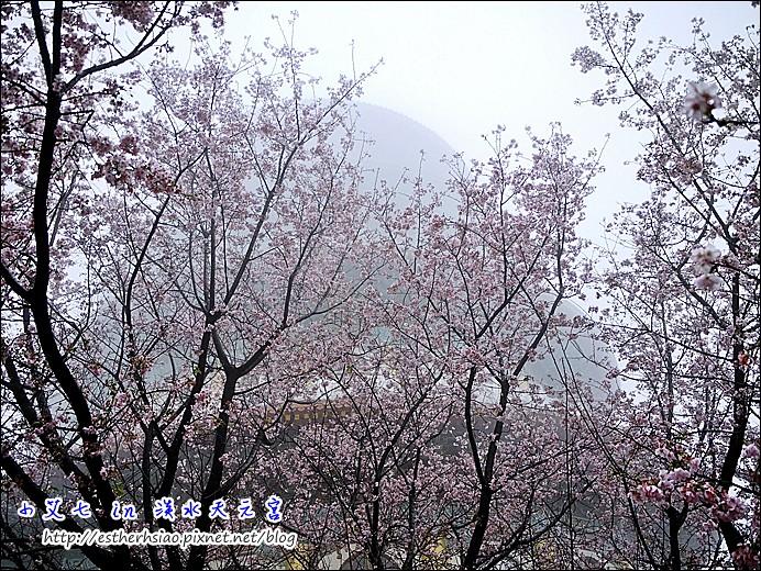 13 真元天壇