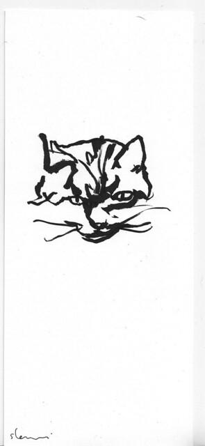 sherwinT-Cat