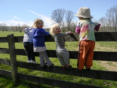 climbing cousins