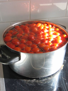 Processing tomatoes for bottling