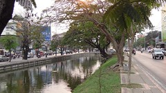 Part of the moat surrounding the historical city centre of Chiang Mai.