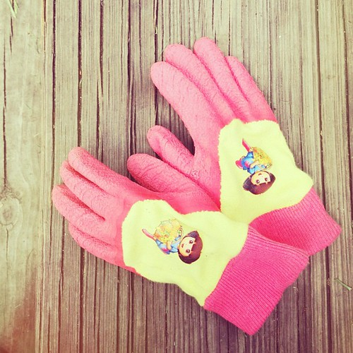 Jude's new gardening gloves.