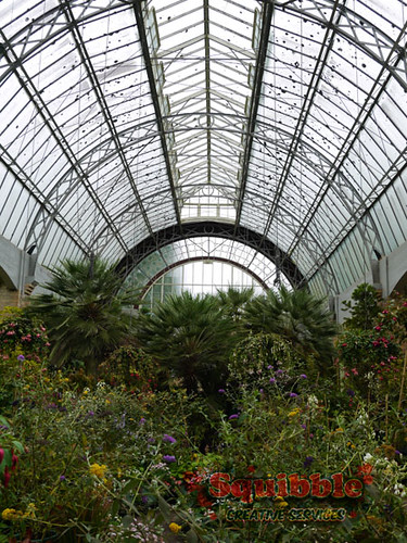 squibble-auckland-travellogs-wintergardens4
