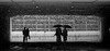 couples and pouring rain by - lexi -