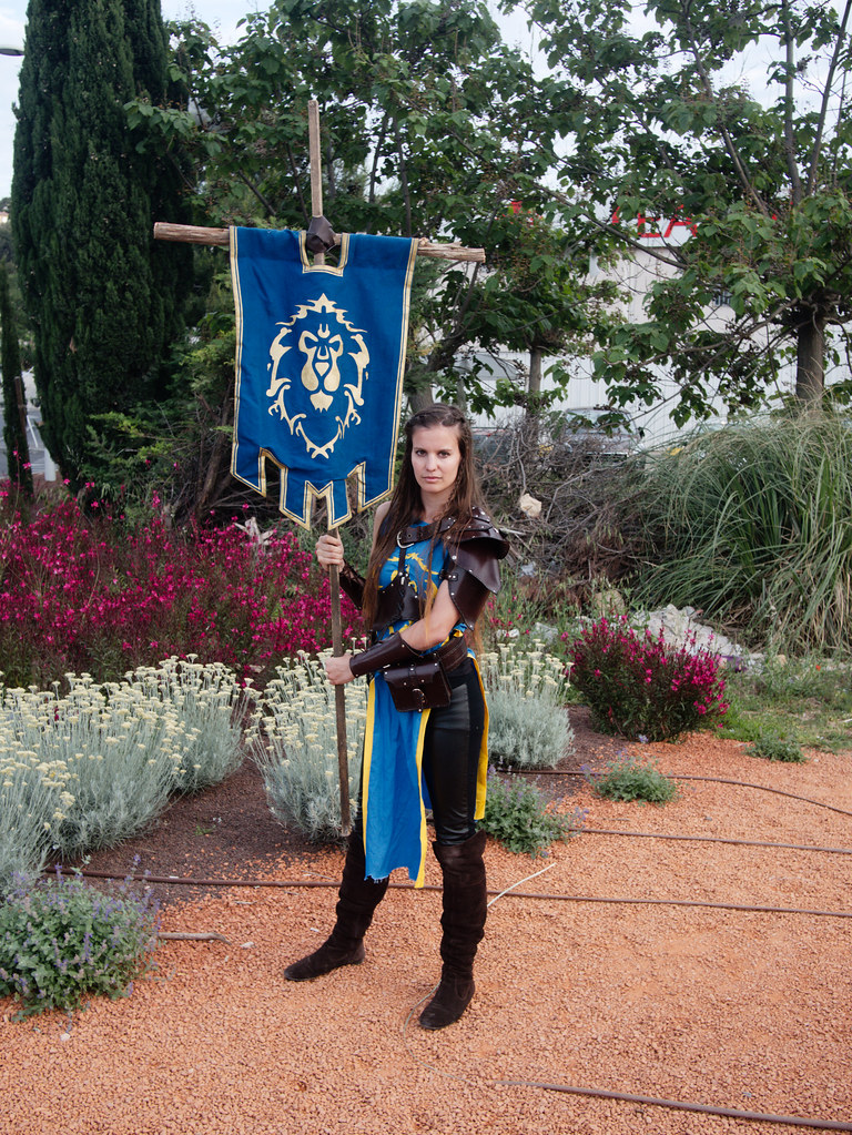 related image - Sortie Film Warcraft - Blizzard - L'Avenue 83 - La Valette du Var -2016-05-25- P1410119