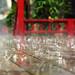 落雨聲 Rainy day in 溪頭妖怪村   Taiwan Nantou LUGU . 台灣南投    DSC_4595