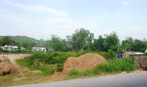 V-Route Quy Nhon-Da Nang (1)