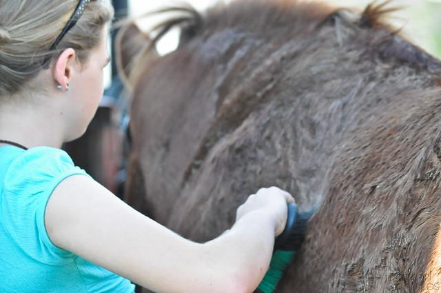 farmgirl-0586.jpg