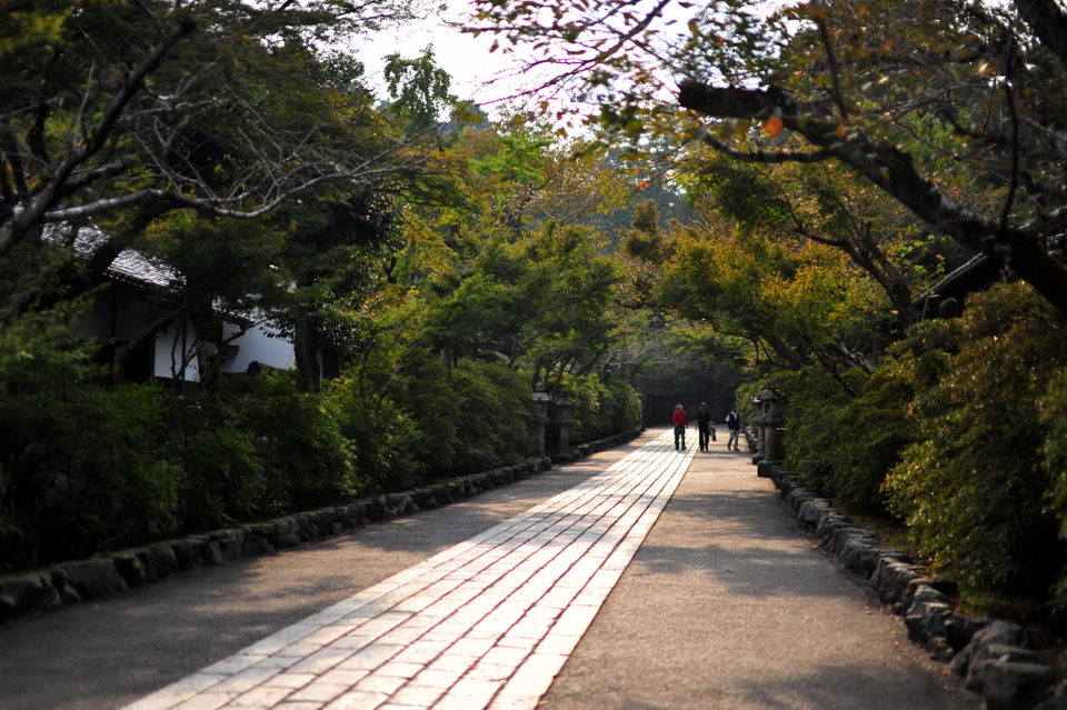 Nice long pathways extending to the main temple area