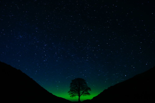 Sycamore Gap with Aurora Borealis (Northern Lights) por dilligaf !