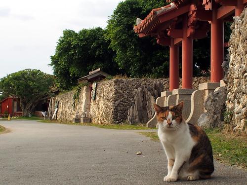 沖縄旅行 2012-04-08 17-37