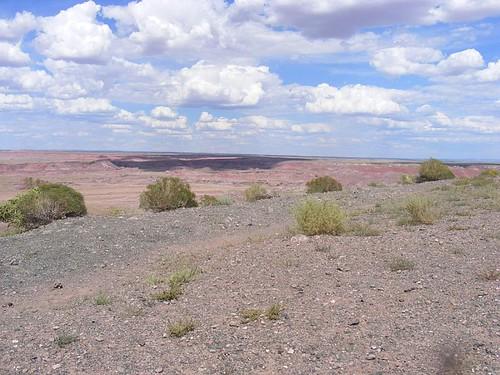 Painted Desert1